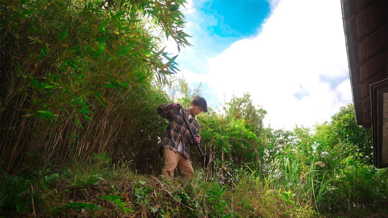 新居に畑を作りたい...この竹林を開拓できるのか。#187
