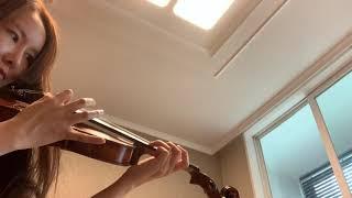 Second hands violin 수제바이올린 중고 …