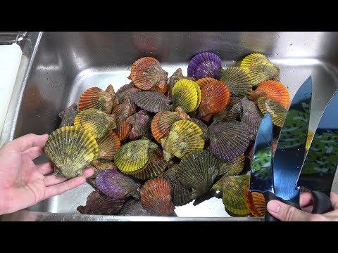大量のカラフル過ぎる貝を爆買い。なんだこれ?ただ、味が半端じゃない。Colorful shellfish