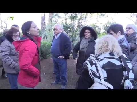 Acção Social | Passeio a Sintra - Junta de Freguesia de Campolide