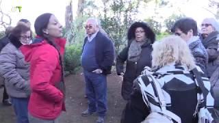 Acção Social   Passeio a Sintra - Junta de Freguesia de Campolide