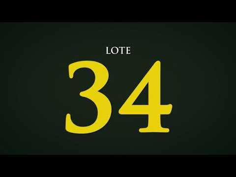 LOTE 34   CSCC 6630