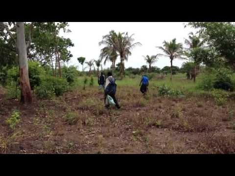 Ghana Tour 2013 - Searching for Ball Pythons