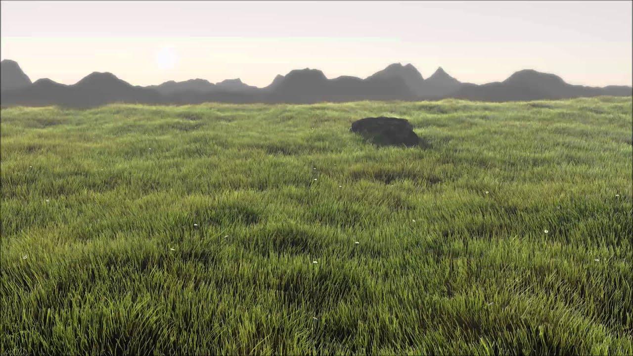 Realistic Grass Field 1080p