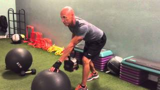 Single Arm Dumbbell Row w Ball Into Raise Plank w Ball