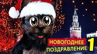видео Фанты на Новый 2019 год с приколами