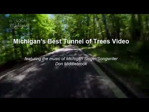 Best Michigan Tunnel of Trees Video Ever