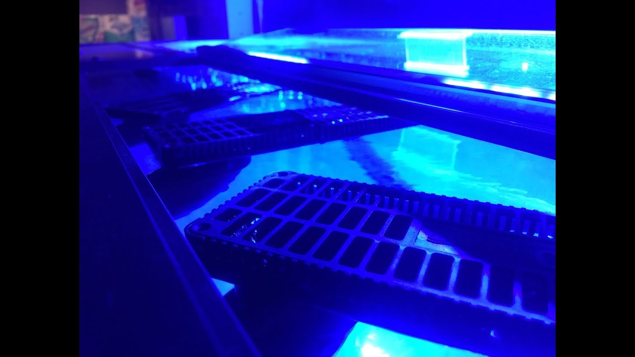 H2Overflows from Custom Aquariums