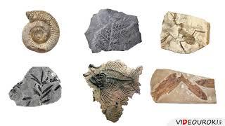 Урок 12  Горные породы и минералы