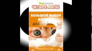 товары для животных интернет магазин