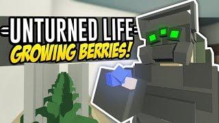 GROWING BERRIES - Unturned Life Roleplay #235