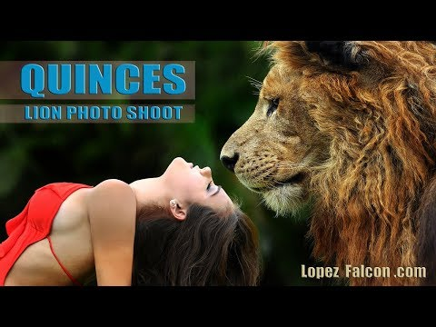 QUINCE PHOTOGRAPHY WITH LION QUINCEANERA CON LEON MIAMI