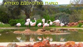 ΑΤΤΙΚΟ ΠΑΡΚΟ