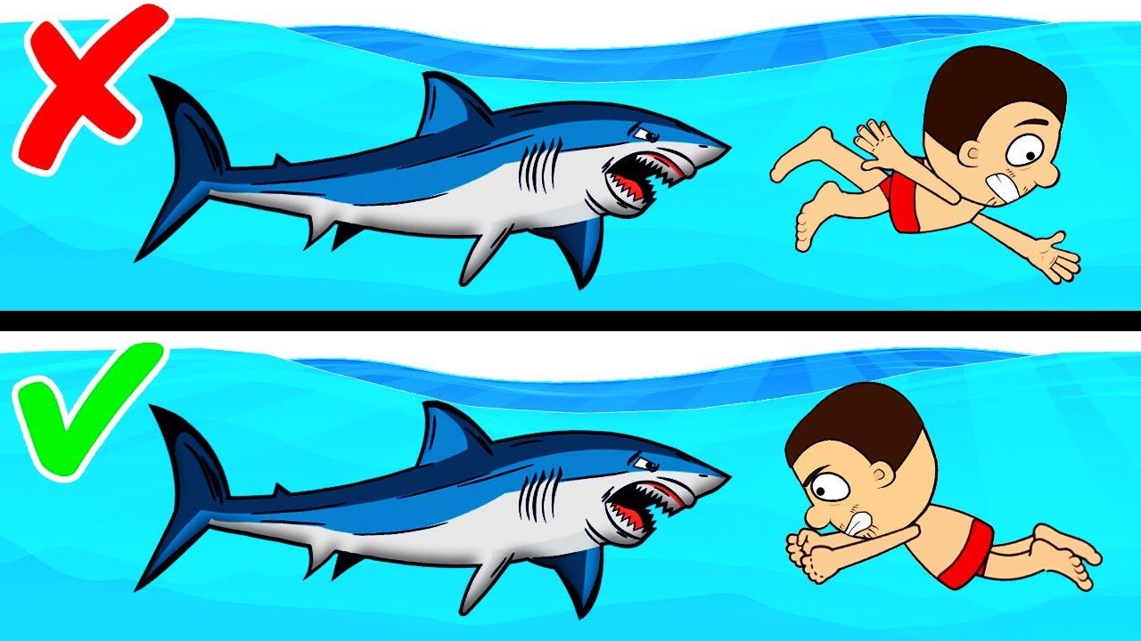 Как выжить при нападении акулы. Лайфхаки по выживанию