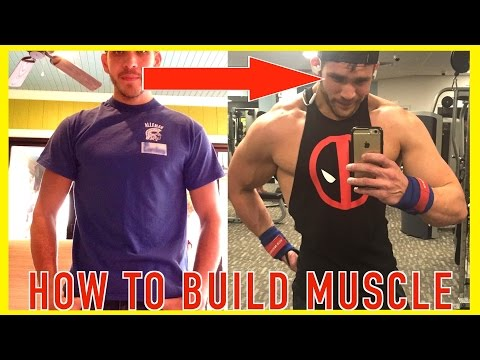 Building Muscle For Beginners & After Weight Loss