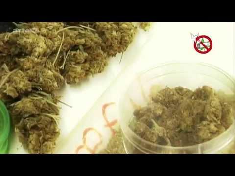 Legal, illegal, ganz egal? Cannabis in Europa - Yourope - Arte - German - Magazin
