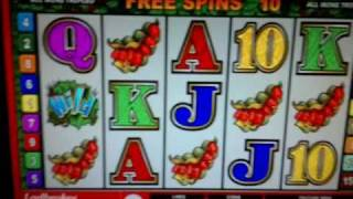 Bush Telegraph Online fruit machine - 5 scatter feature.