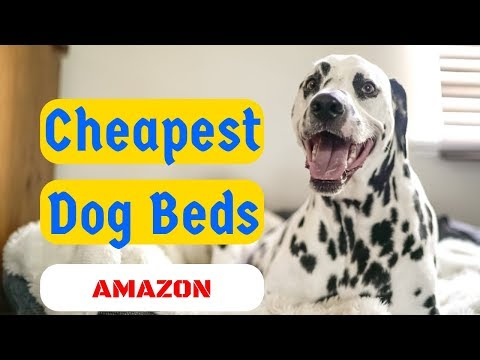 ✅-dog-beds-online-cheap,cheapest-dog-beds-on-amazon.