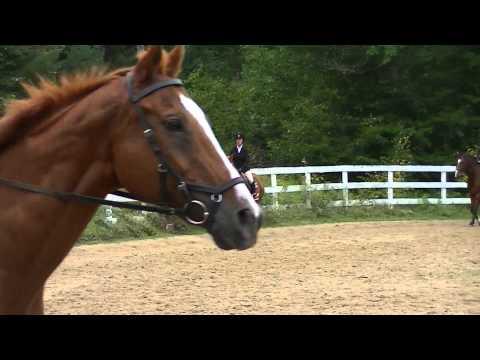 IEA Horse Show 9/13/2015