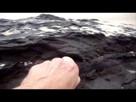 wenn-das-meer-verborgenes-freigibt---lacanau-atlantik-aquitaine-paläoboden