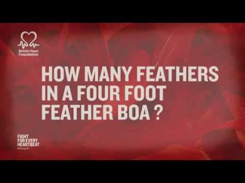 British Heart Foundation - How many feathers on a 4-foot feather boa?