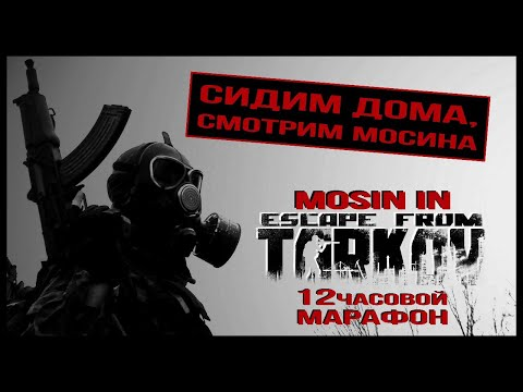 Escape From Tarkov - Антивирусный 12-часовой стрим