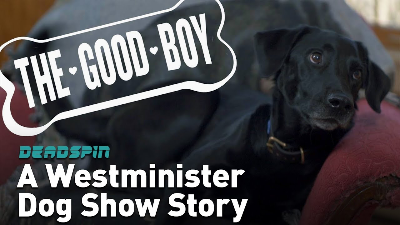 The Good Boy: A Westminster Dog Show Story