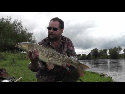 Barbel and Chub Fishing - Free Spirit Shaun Harrison on the River Wye (Part 1)