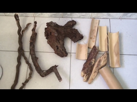 How To Clean Wood For Your Reptile Enclosures