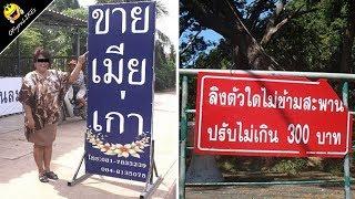 รวมสารพัด ป้ายข้างทาง แปลกๆ ฮาๆ จากทั่วไทย