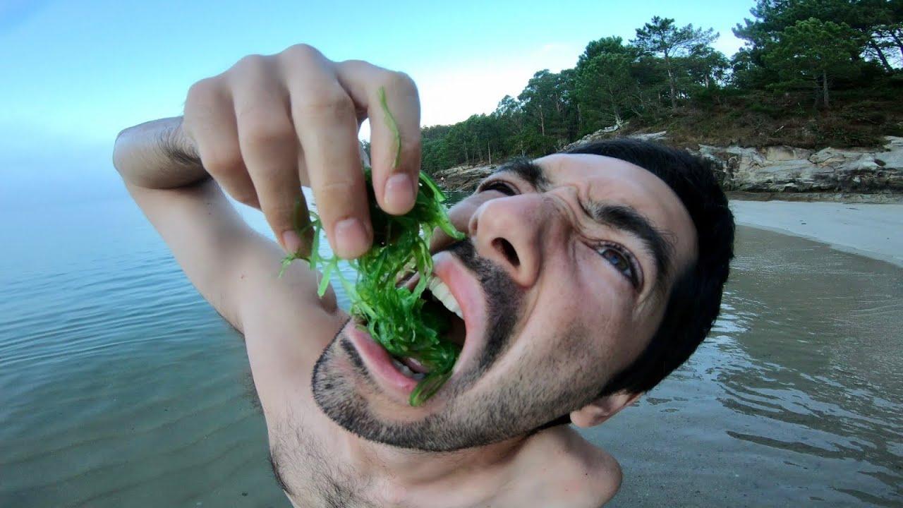 low cost GALICIA SKATE / como algas del MAR 🌊