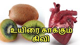 kiwi fruit health benefits in tamil   kiwi pazhathin nanmaigal   Tamil Sign