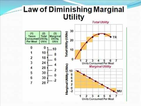 law of diminishing marginal utility essay Question 10 refer to the above table the marginal utility of  the substitution effect the law of diminishing marginal utility  essay writing paper help.