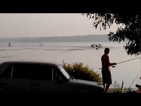 зимняя рыбалка на днепре - 2017-02-02 19:40:51