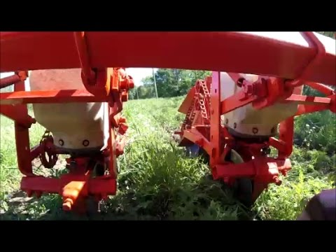 No Till Corn Planting Allis Chalmers 2 Row Planter 2nd Time Is A