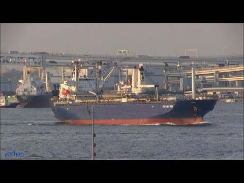 Ro-ro cargo ship (Multi-Purpose Vessel) FORTUNE WIND (EASTERN CAR LINER, LTD.)  多目的船