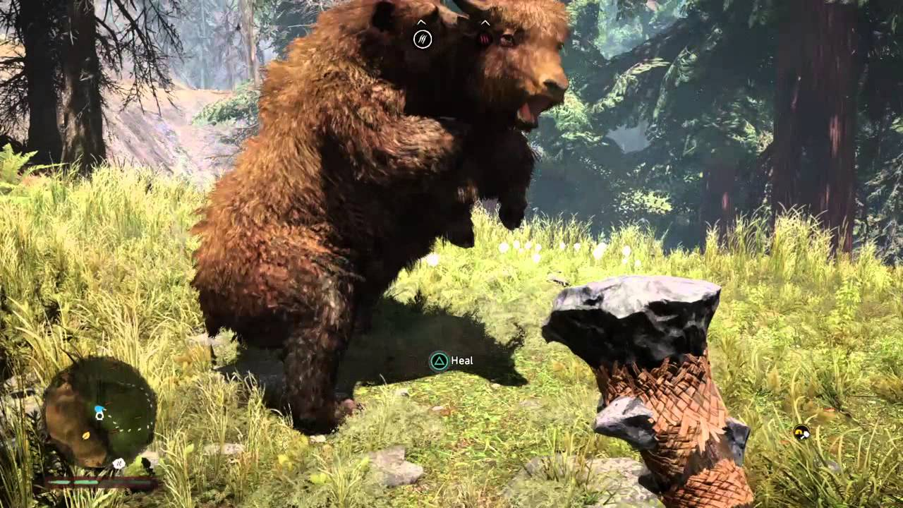 Far Cry Primal Brown Bear Vs Yak Youtube