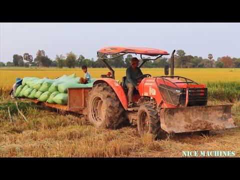Tractor Transport Rice More Than Power And Stuck | ត្រាក់ទ័រដឹកស្រូវច្រើនពេកស្រុតដីជាប់រើមិនរួច