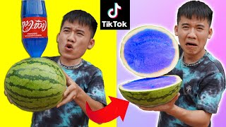 Hưng Troll | THỬ THÁCH LÀM THEO NHỮNG VIDEO TRIỆU VEW TRÊN TIKTOK PHẦN 4 | Biến Quả Dưa Hấu Màu Xanh
