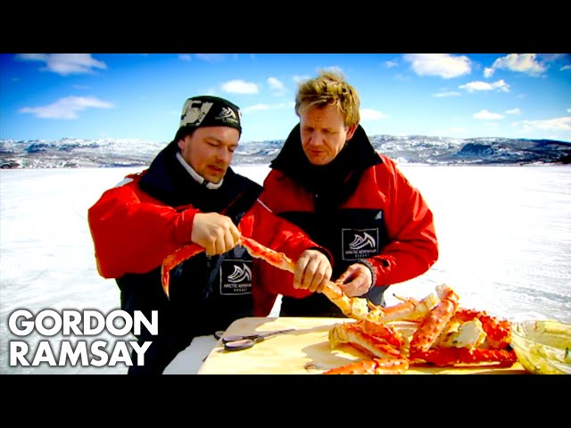 Watch Gordon Ramsay Catch And Cook King Crab Eater