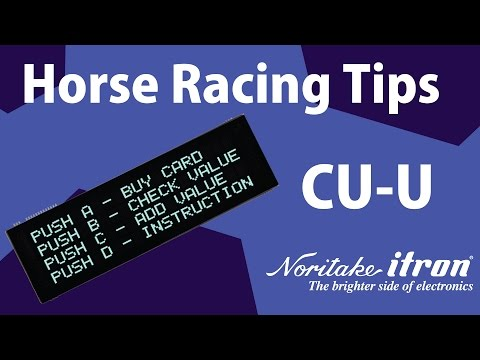 Noritake BC-VFD: DS2049F 20x4 Large Font - Horse Racing Demo Using Arduino