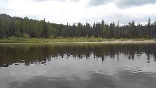 Видео 2 к отчету Красноярский край, притоки Енисея(Полный отчет у нас на сайте