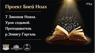 7 Законов Ноаха. Урок седьмой. Преподаватель  р.Элиягу Гергель
