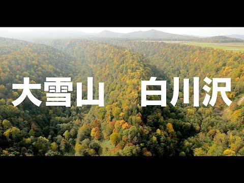 【空の旅#2】「赤・黄・緑。熊の棲む森」空撮・多胡光純 北海道_Hokkaido aerial