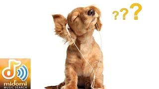 Как распознать трек с мидоми(Мидоми - впечатляющий музыкальный сервис. Стоит вам напеть песню — и Midomi, скорее всего, угадает, что вы поете..., 2014-12-07T11:32:33.000Z)
