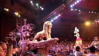 Disney World Lion King Simba
