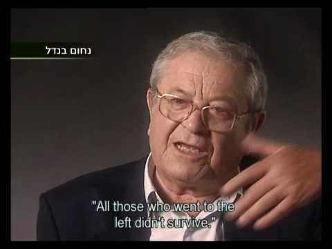 Holocaust Survivor Testimonies: The Anguish of Liberation