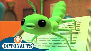 Octonauts - Long Lost Tree Lobsters | Cartoons for Kids | Underwater Sea Education