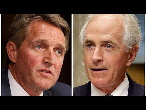 Second Republican Senator attacks Trump