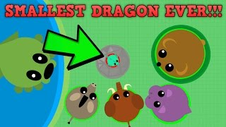 SMALLEST DRAGON EVER! WORLDS SMALLEST DRAGON 0XP! (Mope.io New Update)